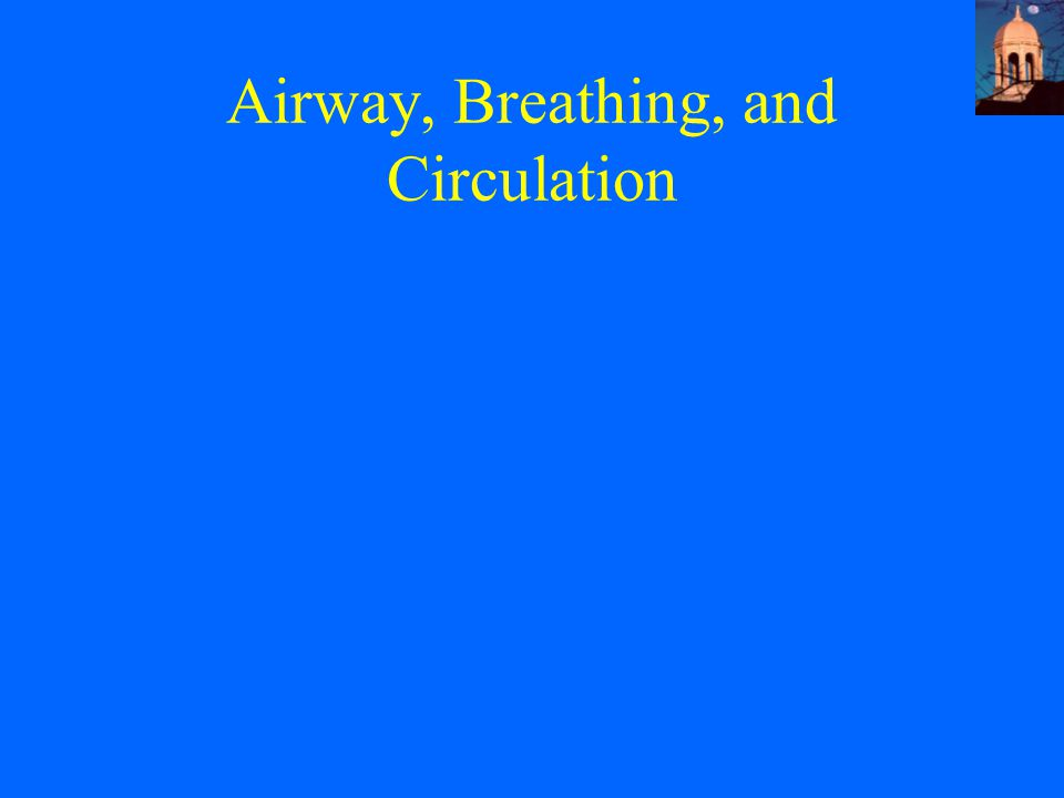 Airway, Breathing, and Circulation