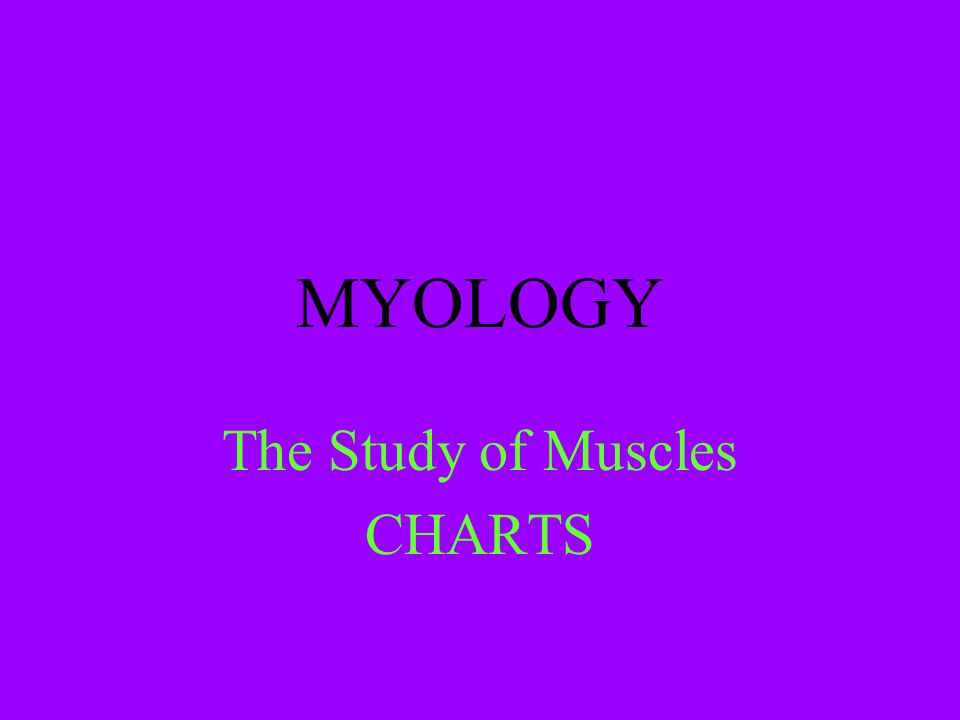 The Study of Muscles CHARTS