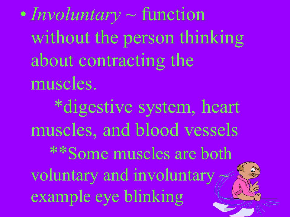 Involuntary ~ function without the person thinking about contracting the muscles. *digestive system, heart muscles, and blood vessels **Some muscles are both voluntary and involuntary ~ example eye blinking