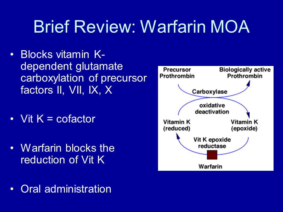 Brief Review: Warfarin MOA