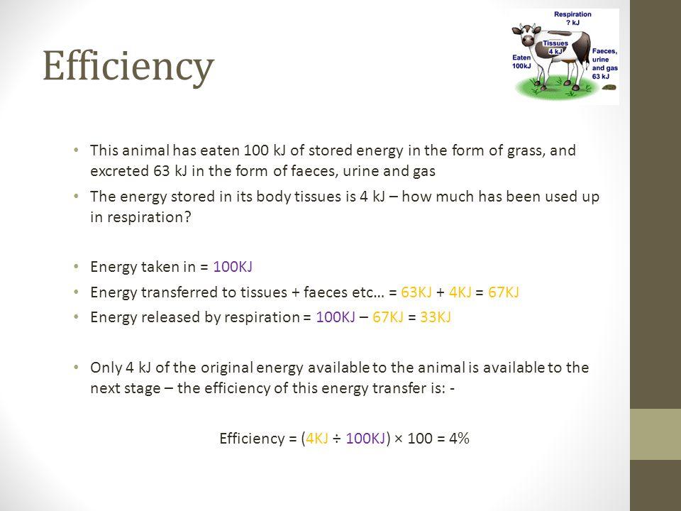 Efficiency = (4KJ ÷ 100KJ) × 100 = 4%