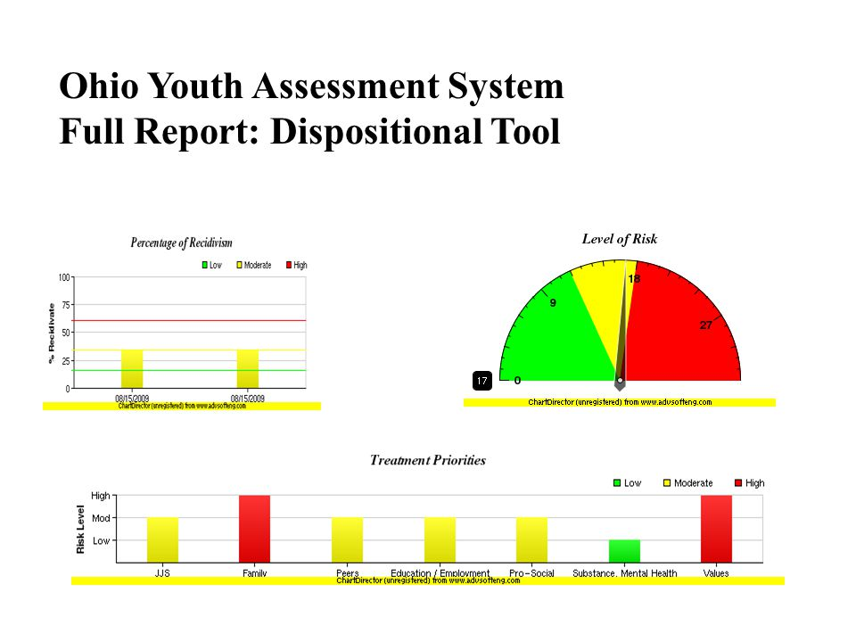 Ohio Youth Assessment System