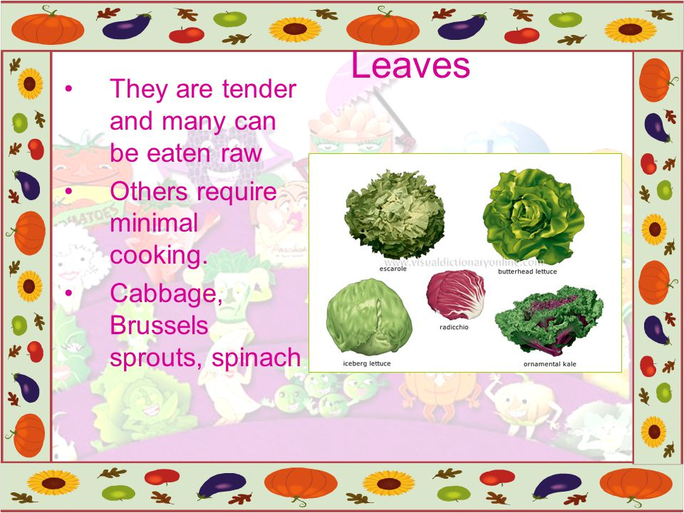 Leaves They are tender and many can be eaten raw