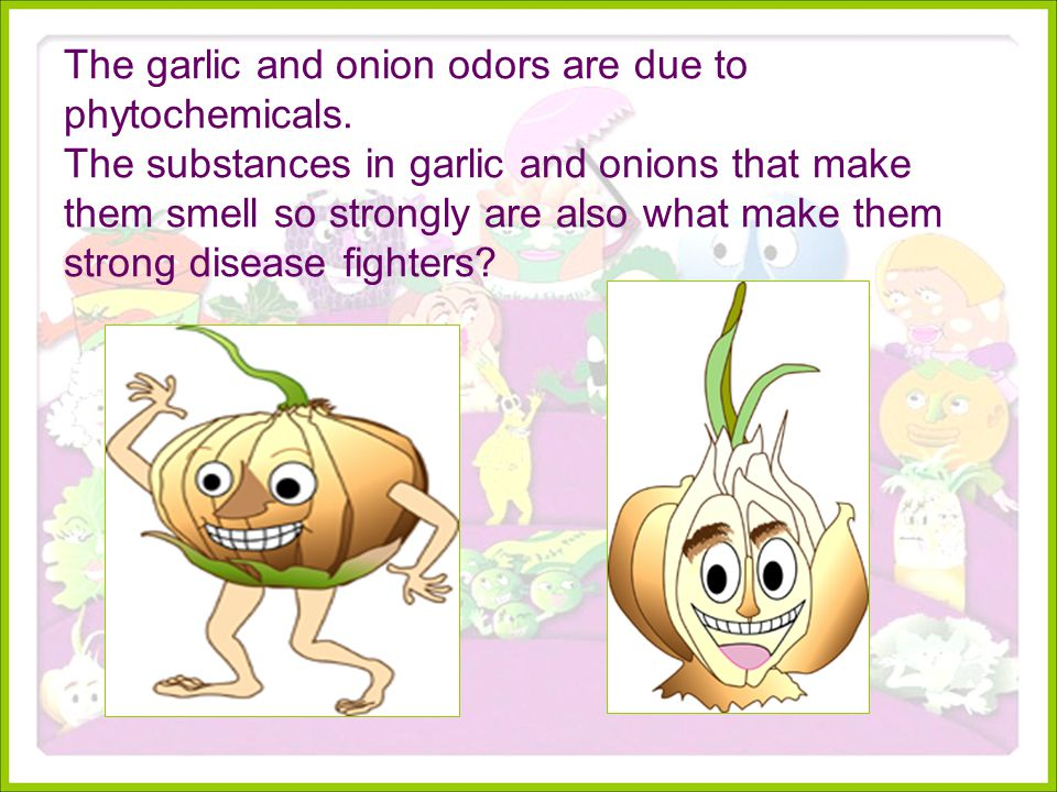 The garlic and onion odors are due to phytochemicals