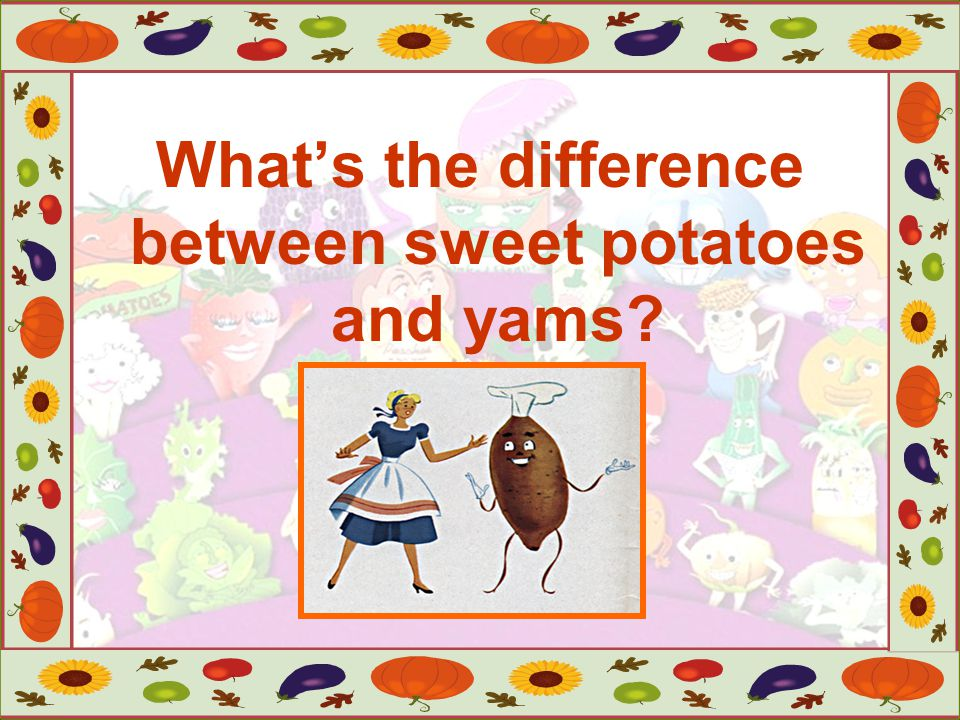 What's the difference between sweet potatoes and yams