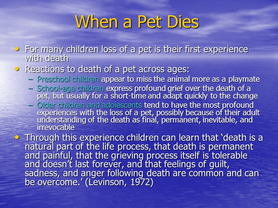 When a Pet Dies For many children loss of a pet is their first experience with death. Reactions to death of a pet across ages: