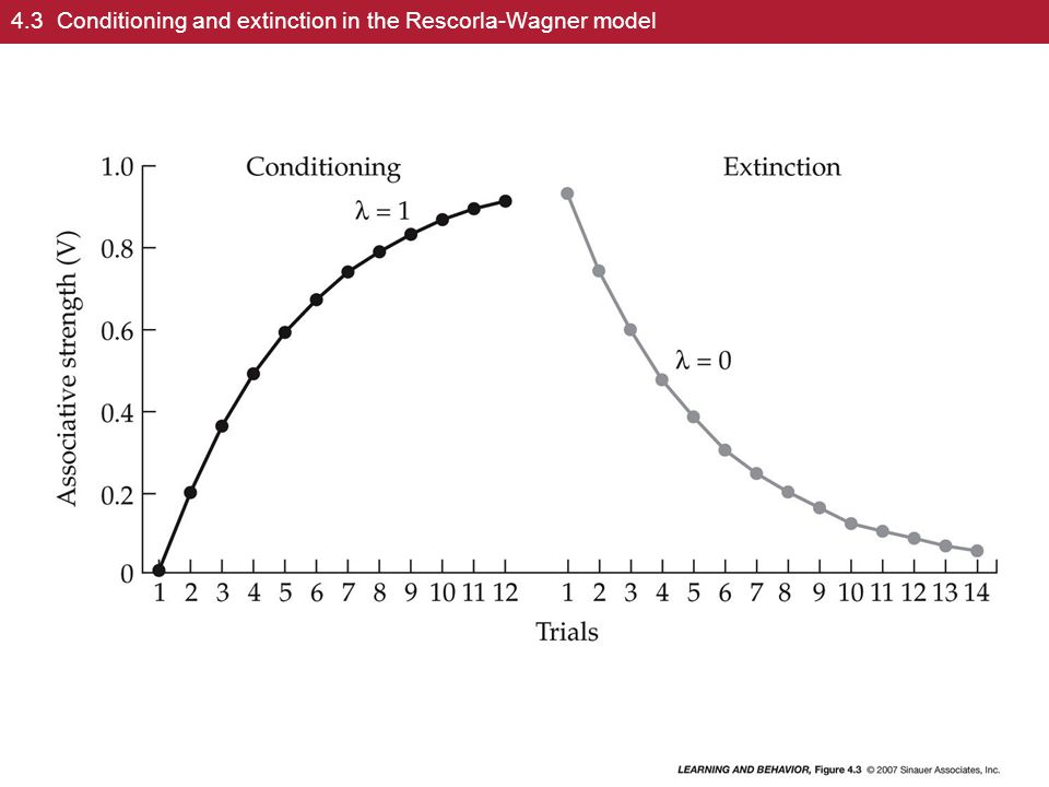 rescorla wagner learning - rescorla-wagner model • practical applications of pavlovian conditioning  learning a specific ur • s-s theory - association is learned between cs and.