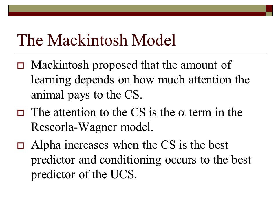 The Mackintosh Model Mackintosh proposed that the amount of learning depends on how much attention the animal pays to the CS.