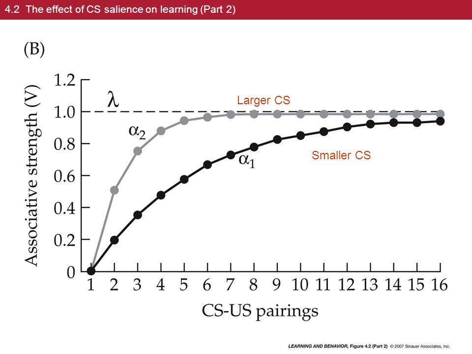 4.2 The effect of CS salience on learning (Part 2)