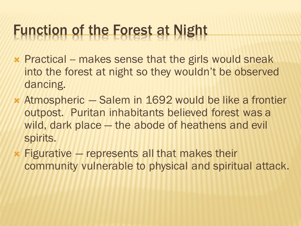 Function of the Forest at Night