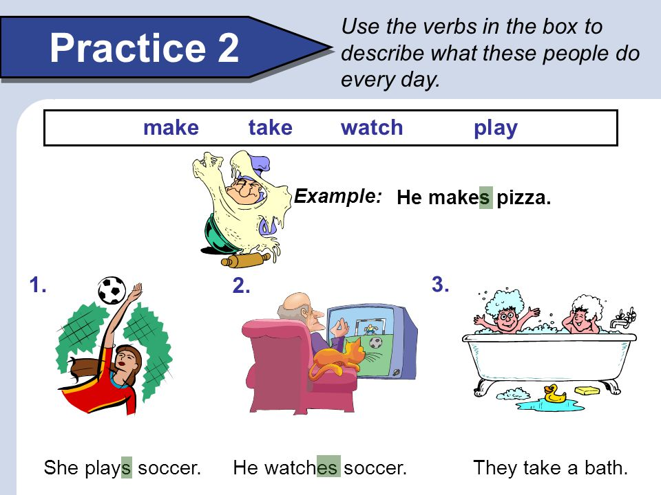 Use the verbs in the box to describe what these people do every day.
