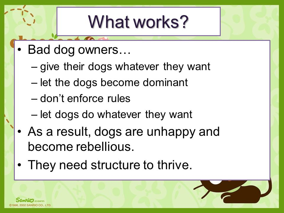 What works Bad dog owners…