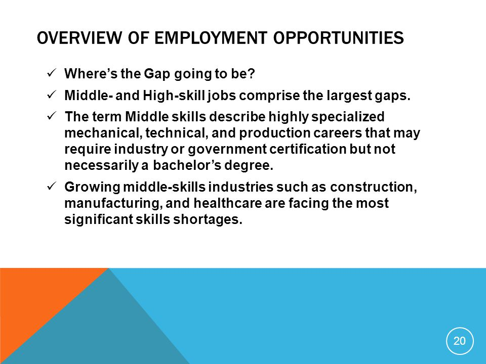 Overview of employment opportunities