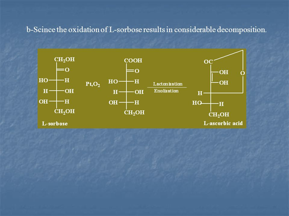 b-Scince the oxidation of L-sorbose results in considerable decomposition.