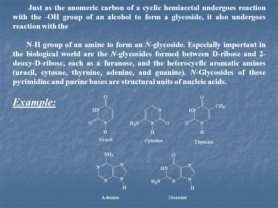 Just as the anomeric carbon of a cyclic hemiacetal undergoes reaction with the -OH group of an alcohol to form a glycoside, it also undergoes reaction with the