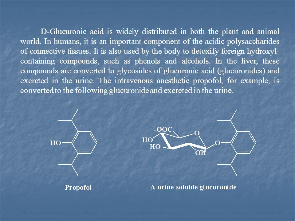 D-Glucuronic acid is widely distributed in both the plant and animal world.