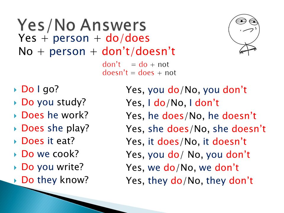 Yes/No Answers Yes + person + do/does No + person + don't/doesn't