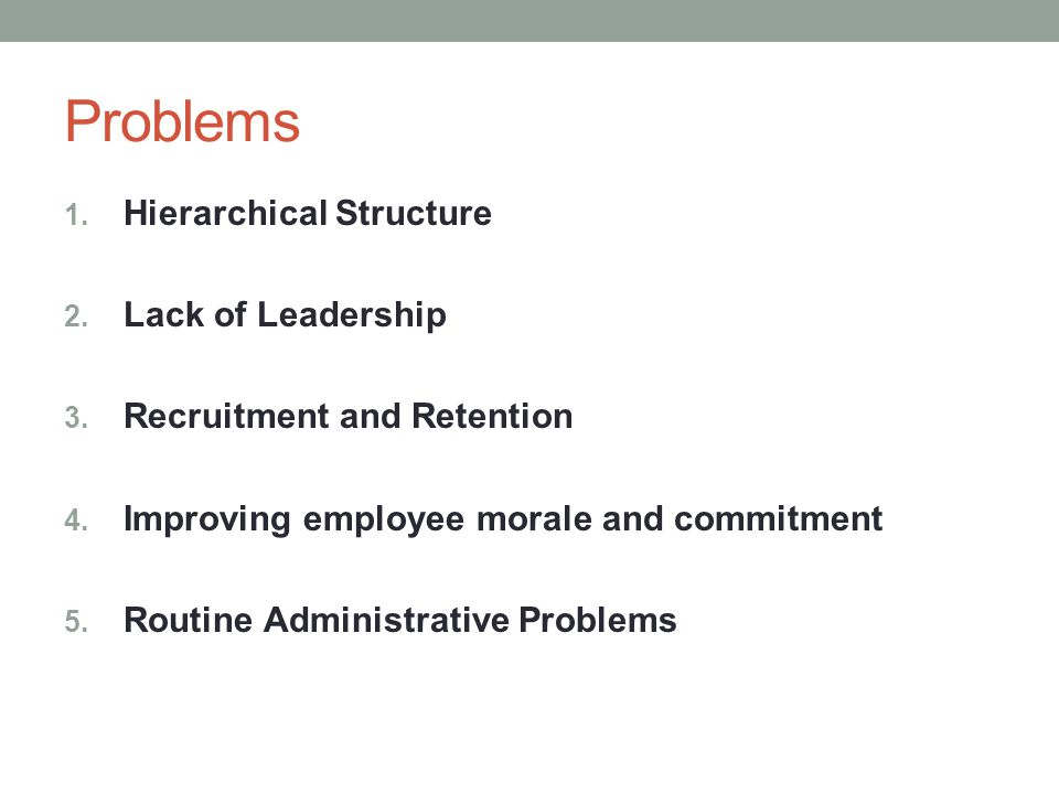 Problems Hierarchical Structure Lack of Leadership