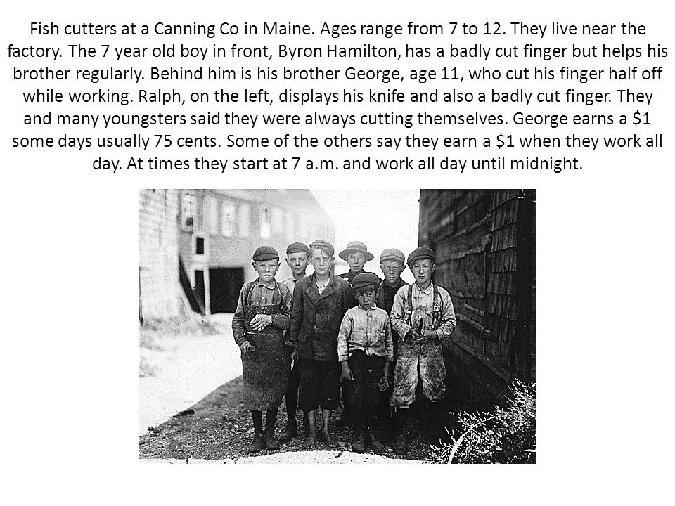 Fish cutters at a Canning Co in Maine. Ages range from 7 to 12