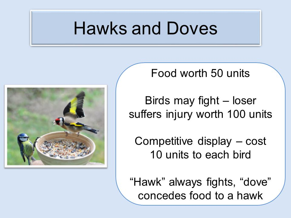 Hawks and Doves Food worth 50 units