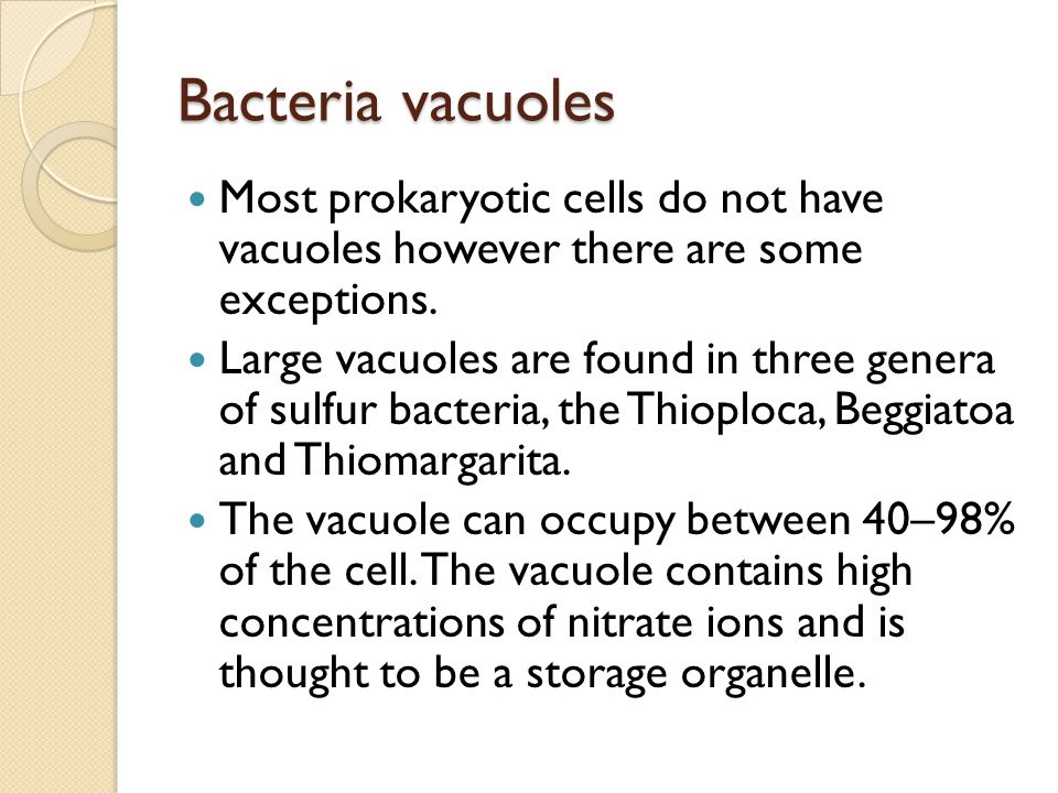 Bacteria vacuoles Most prokaryotic cells do not have vacuoles however there are some exceptions.