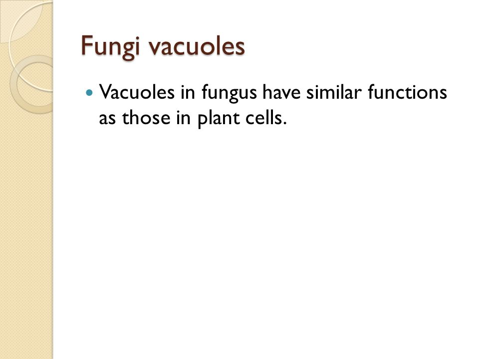 Fungi vacuoles Vacuoles in fungus have similar functions as those in plant cells.