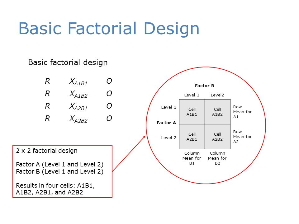 Basic Factorial Design