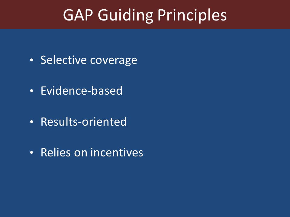 GAP Guiding Principles