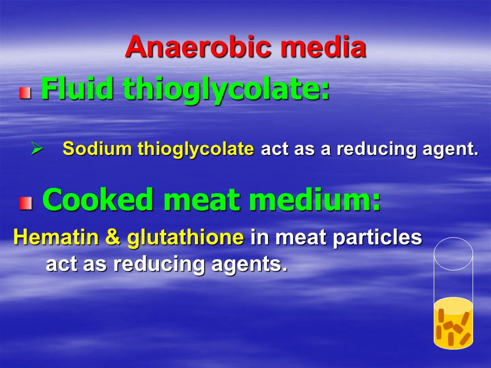 Anaerobic media Cooked meat medium: Fluid thioglycolate: