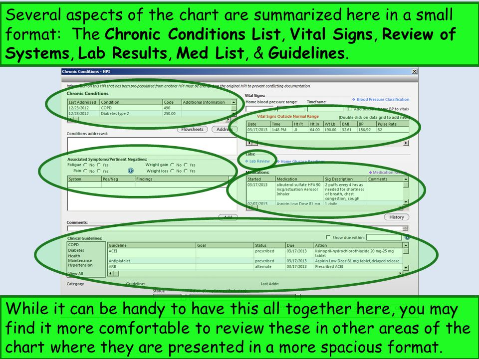 Several aspects of the chart are summarized here in a small format: The Chronic Conditions List, Vital Signs, Review of Systems, Lab Results, Med List, & Guidelines.