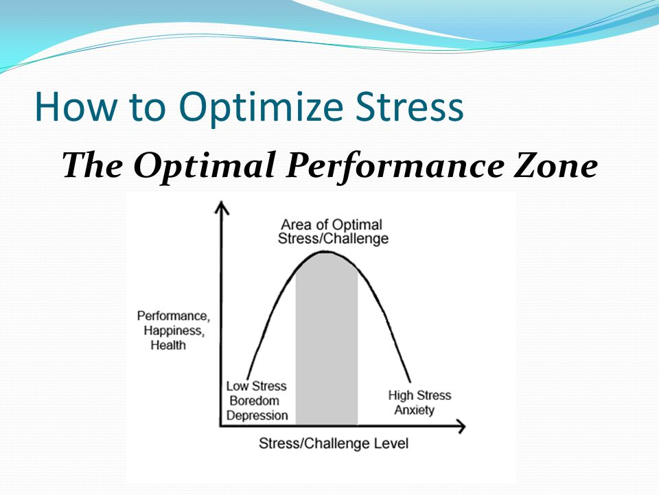 The Optimal Performance Zone