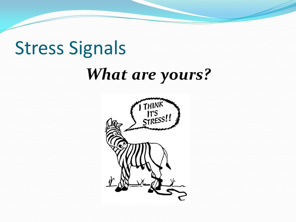 Stress Signals What are yours
