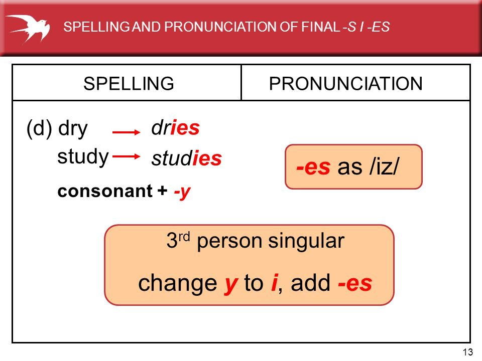 -es as /iz/ change y to i, add -es (d) dry dries study studies