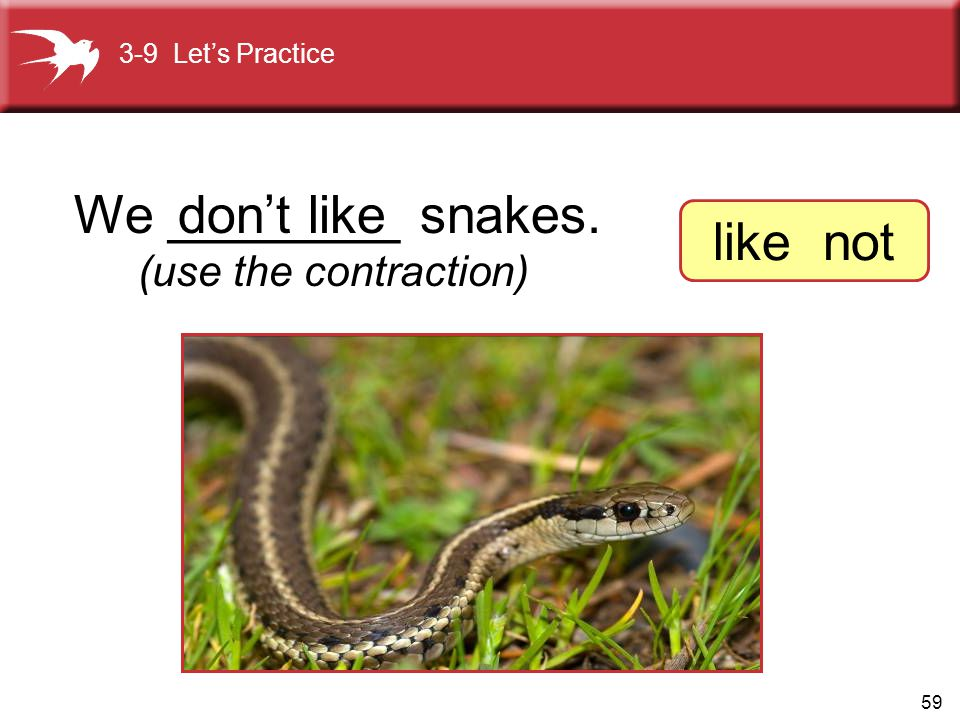 We ________ snakes. don't like like not (use the contraction)