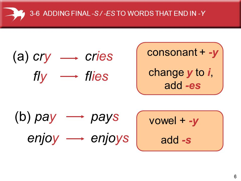 (a) cry cries fly flies (b) pay pays enjoy enjoys consonant + -y