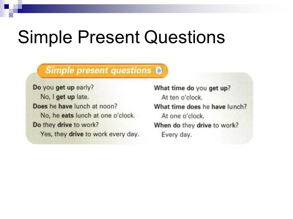 Simple Present Questions