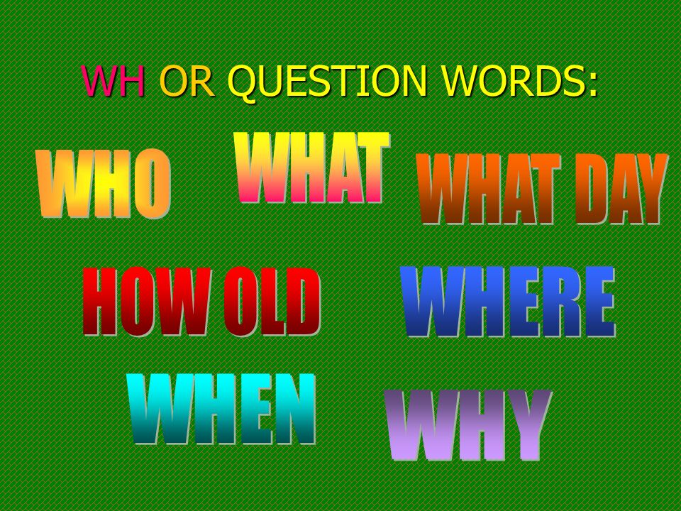 WH OR QUESTION WORDS: WHAT WHO WHAT DAY HOW OLD WHERE WHEN WHY
