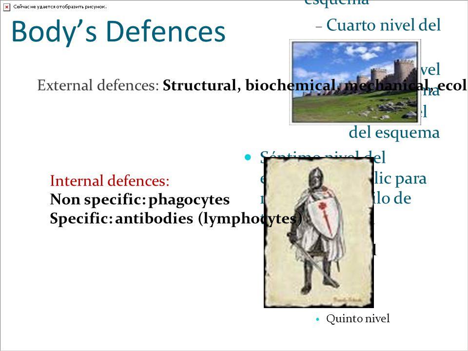 Body's Defences External defences: Structural, biochemical, mechanical, ecological. Internal defences:
