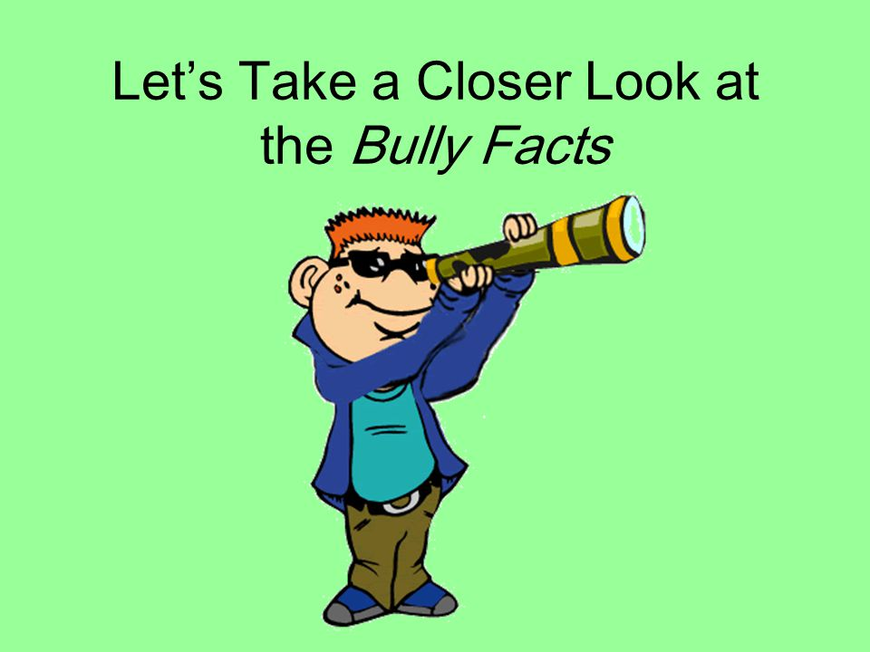 Let's Take a Closer Look at the Bully Facts