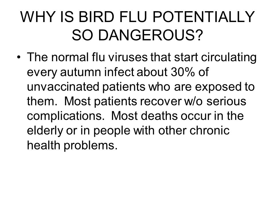 WHY IS BIRD FLU POTENTIALLY SO DANGEROUS