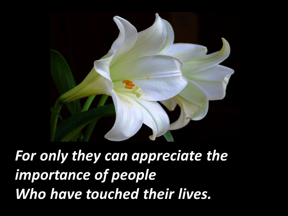 For only they can appreciate the importance of people Who have touched their lives.