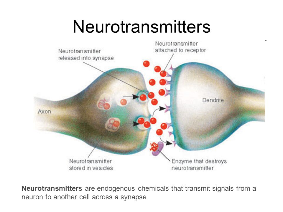 Neurotransmitters Neurotransmitters are endogenous chemicals that transmit signals from a neuron to another cell across a synapse.