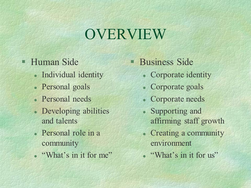 OVERVIEW Human Side Business Side Individual identity Personal goals
