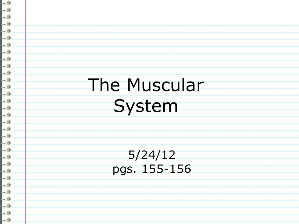 The Muscular System 5/24/12 pgs. 155-156