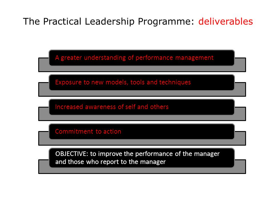 The Practical Leadership Programme: deliverables