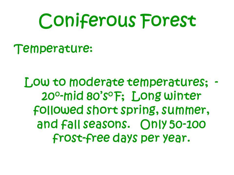 Coniferous Forest Temperature: