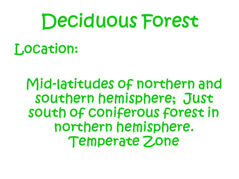 Deciduous Forest Location: