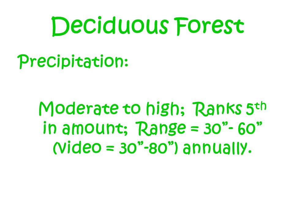 Deciduous Forest Precipitation: