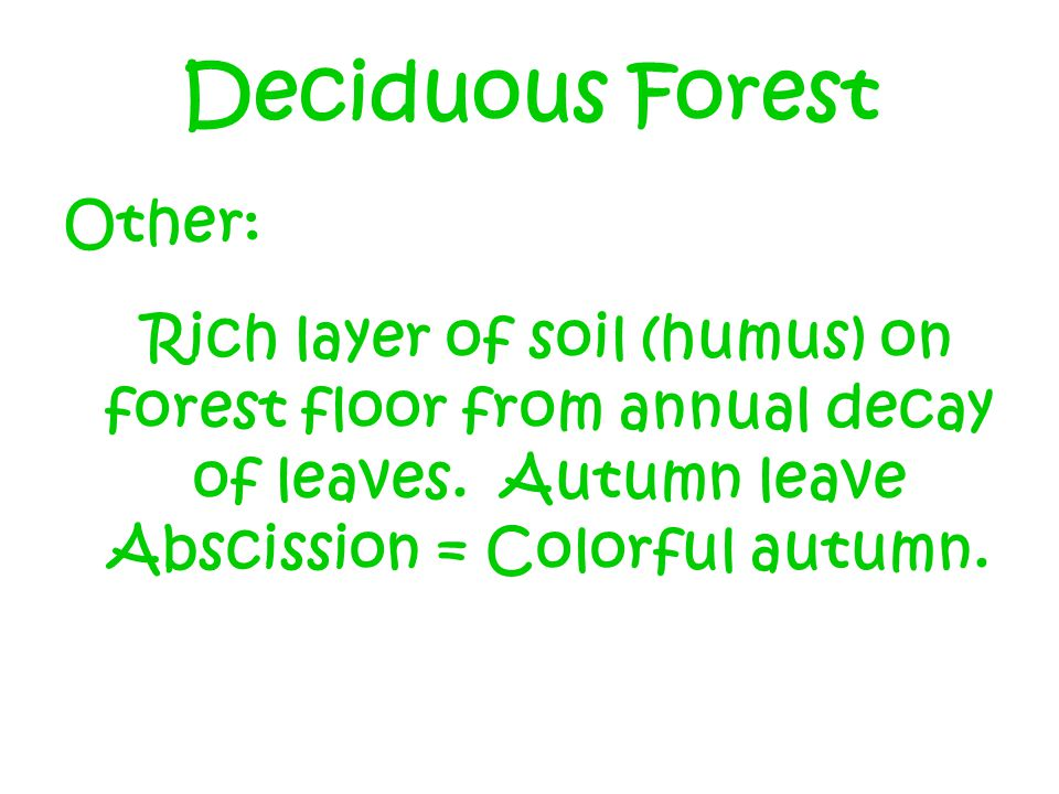 Deciduous Forest Other: