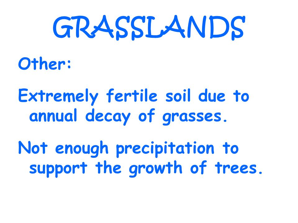 GRASSLANDS Other: Extremely fertile soil due to annual decay of grasses.